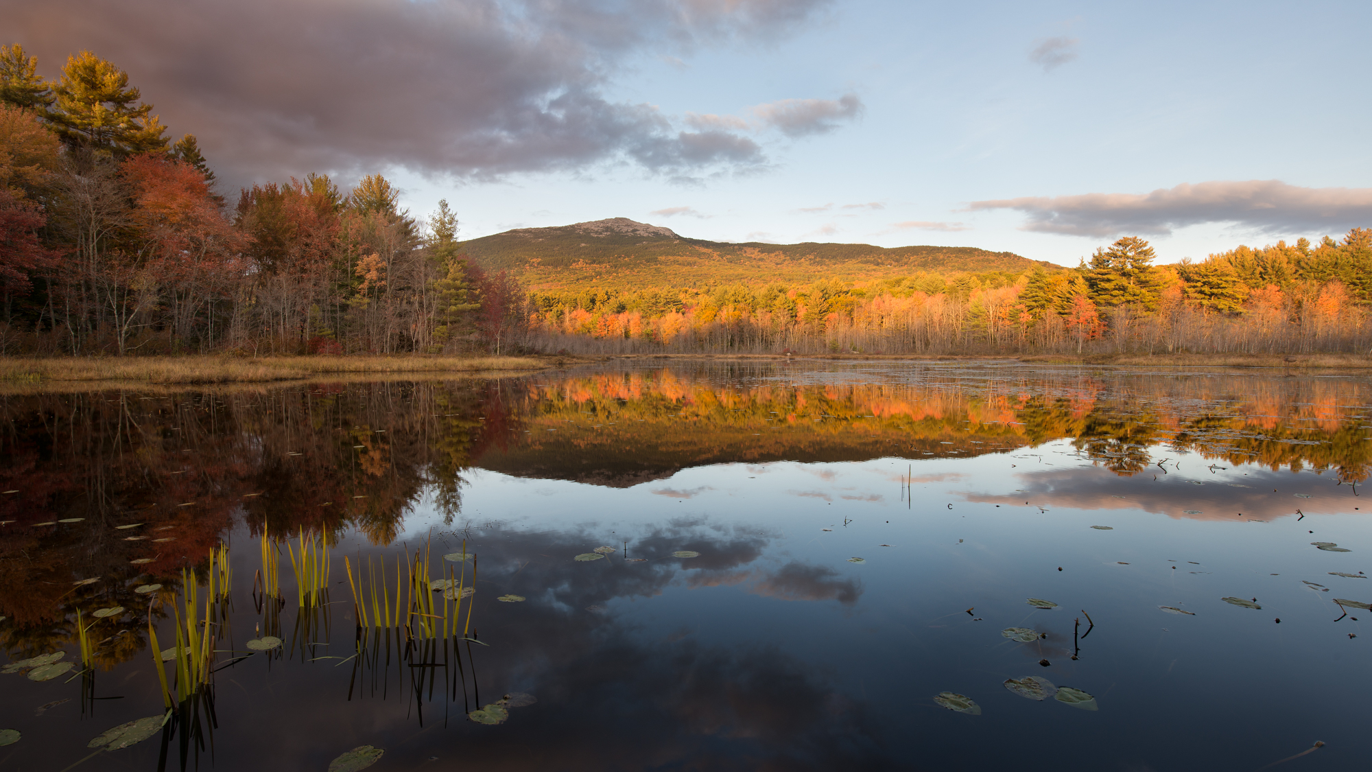 perkins-pond-mount-monadnock-